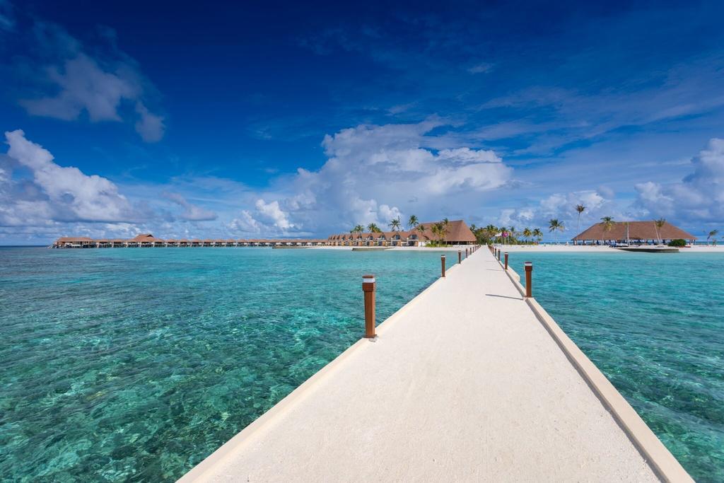 Fiber Thatch Maldives_Cinnamon Velifushi 02